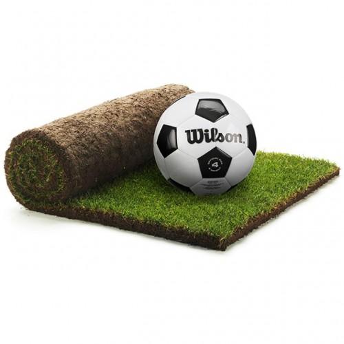 Рулонный газон Evergreen Sport - 1м²